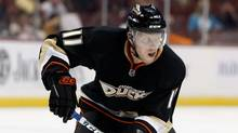 Saku Koivu of the Anaheim Ducks. (Jeff Gross/2009 Getty Images)