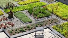 The award-winning green roof designed by Scott Torrance Landscaping for Esri Canada in Toronto. It gives Esri workers a view over 53 types of trees, grasses, sedums, shrubs, herbs and flowers. (Margaret Mulligan)